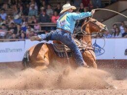Pikes Peak Or Bust Rodeo Colorado Springs Cowboy