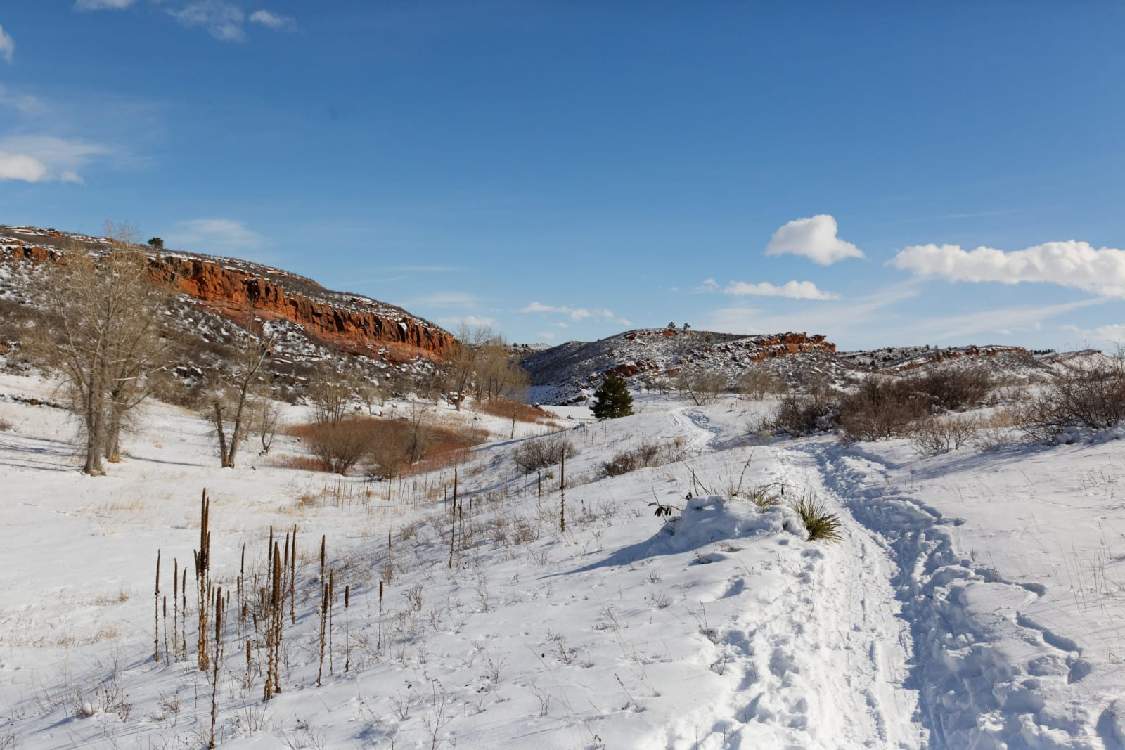 Hiking Fort Collins CO Lory State Park Trail