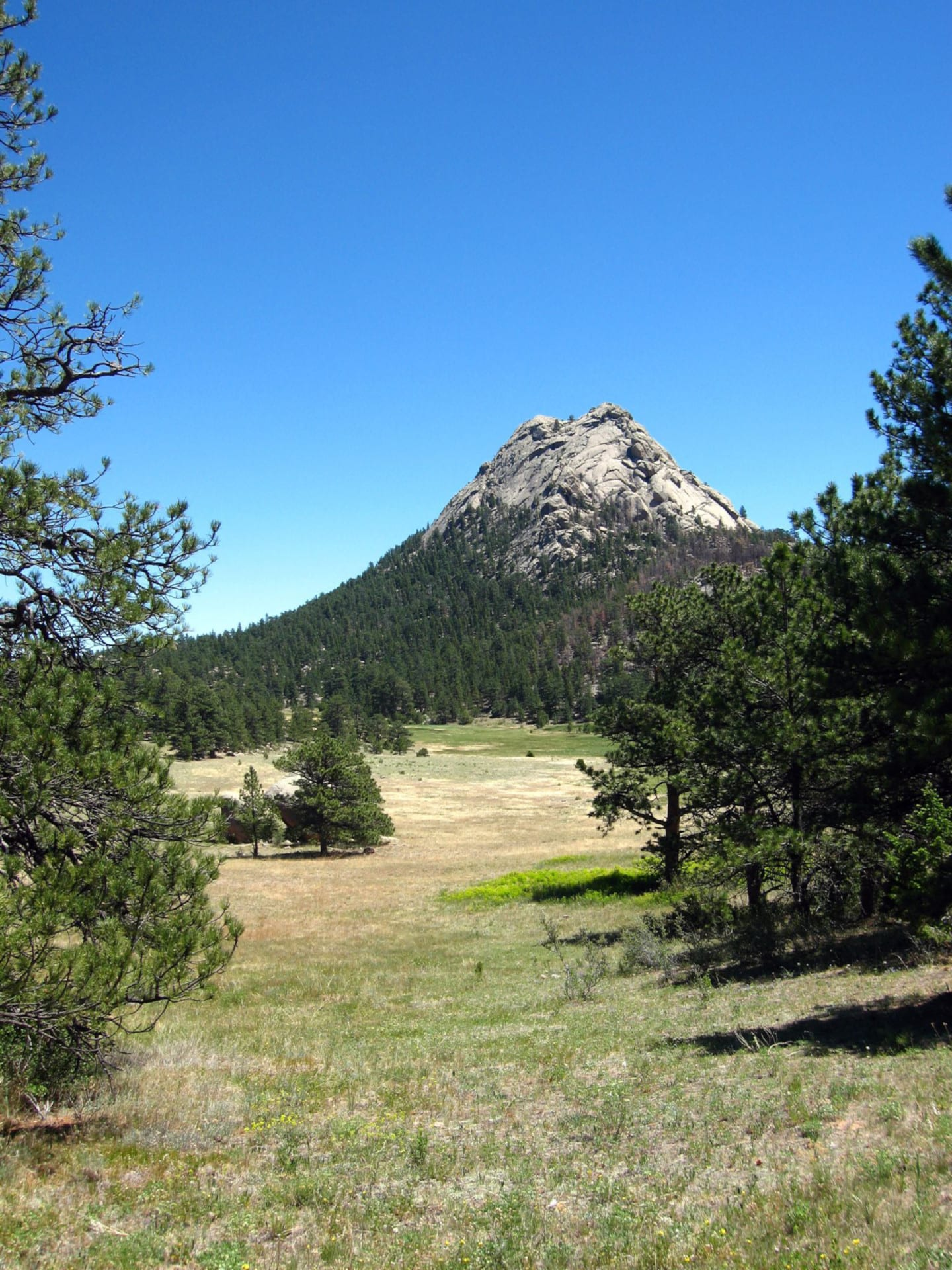 Hiking Fort Collins CO Red Fox Meadows Natural Area Trail