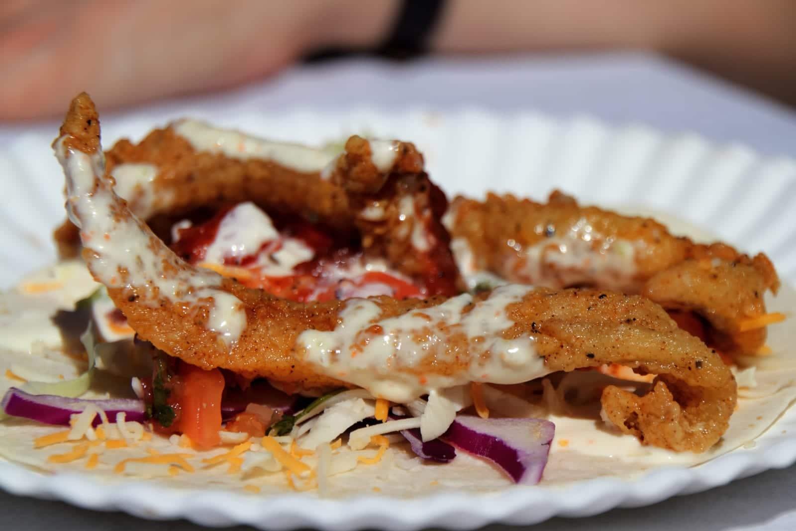 A Taste Of Colorado Fish Tacos