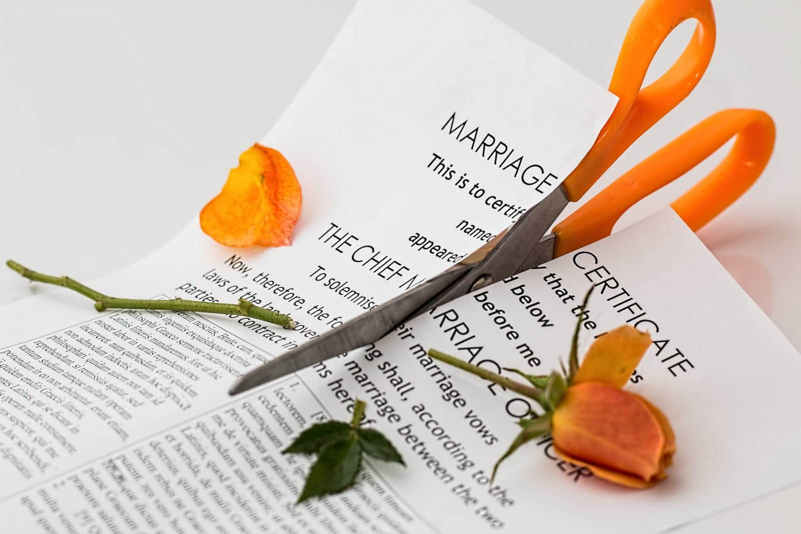 Colorado Divorce Attorneys Alimony Annulment Break Up