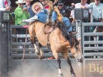 Colorado State Fair Rodeo Pueblo