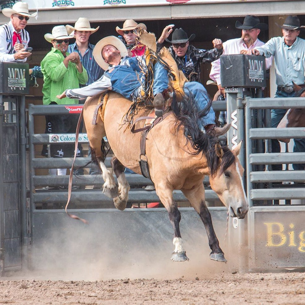 Colorado State Fair Rodeo Bull Riding