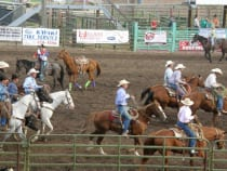 Delta County Fair Rodeo Hotchkiss