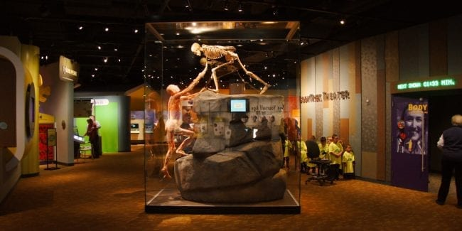 Take Your Kids to these Interactive Denver Museums | Best Family Museums