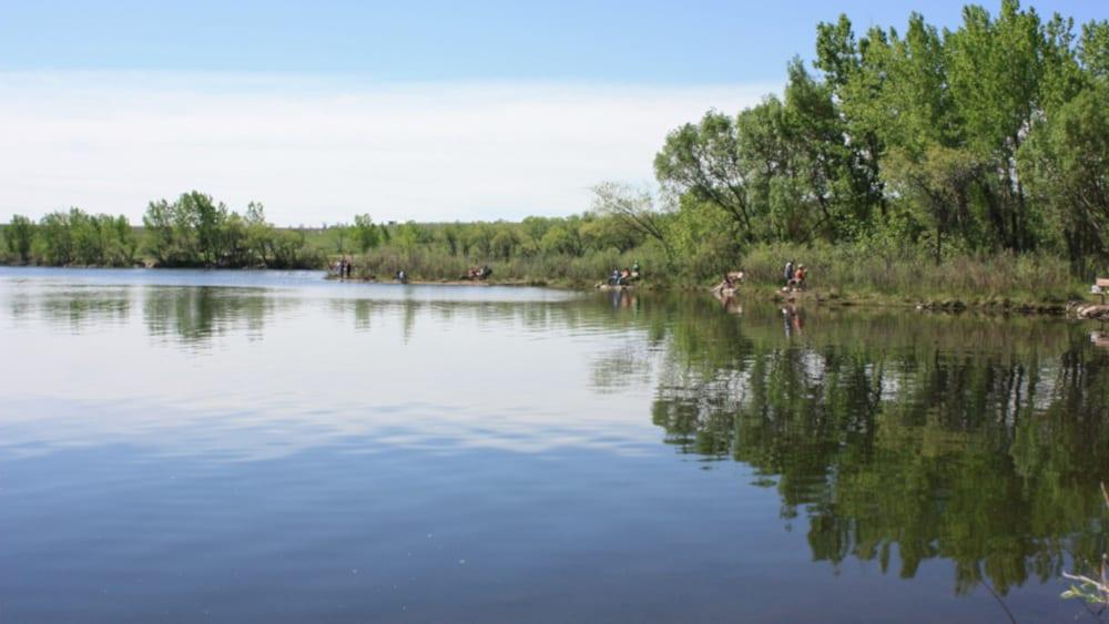 Fishing Around Denver Bear Creek Lake Shore