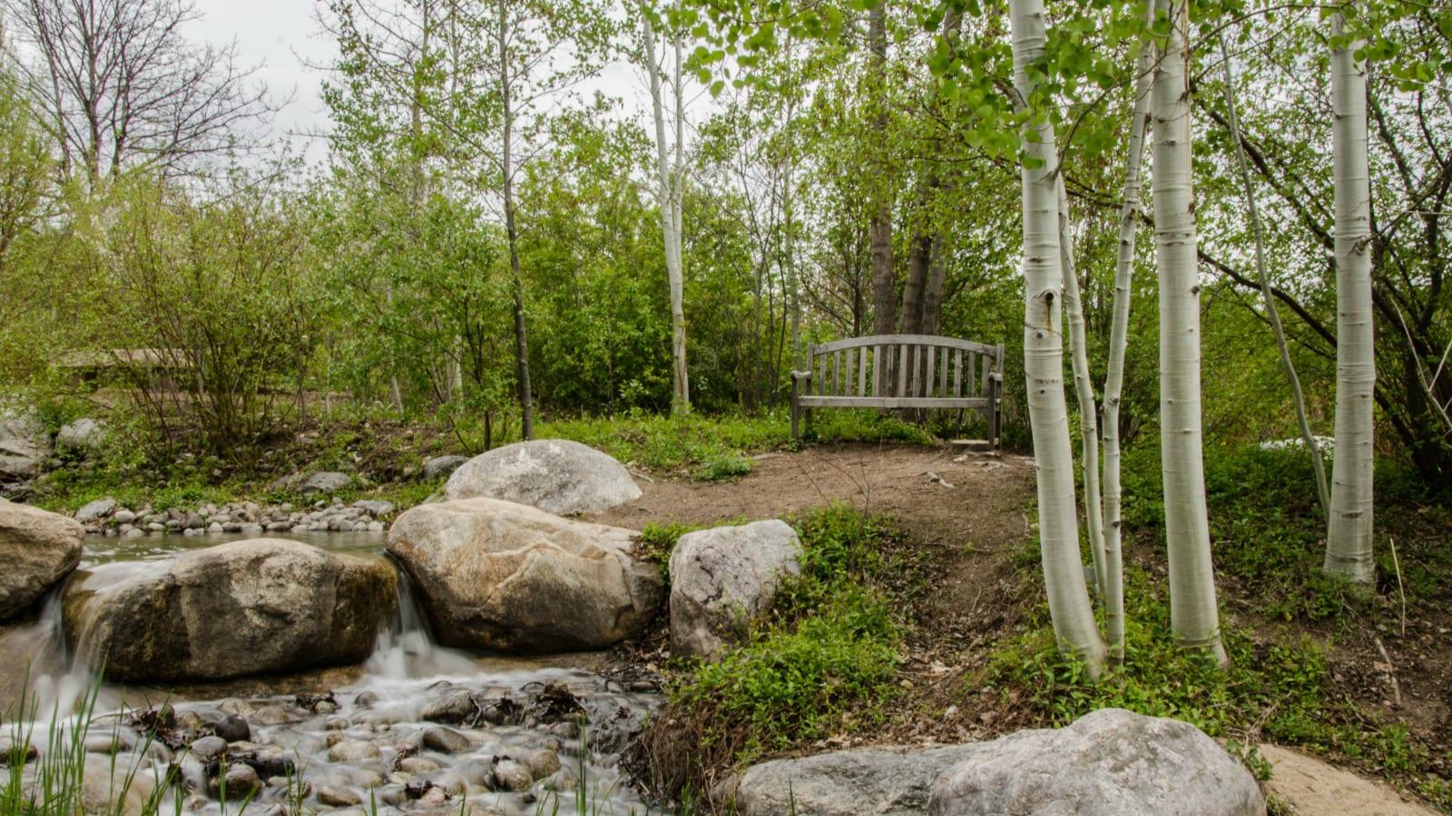 Hudson Gardens Littleton CO Spring Bench