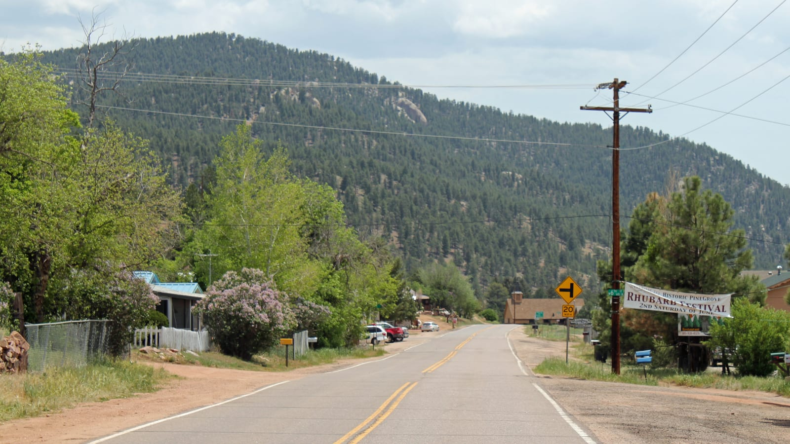Pine CO