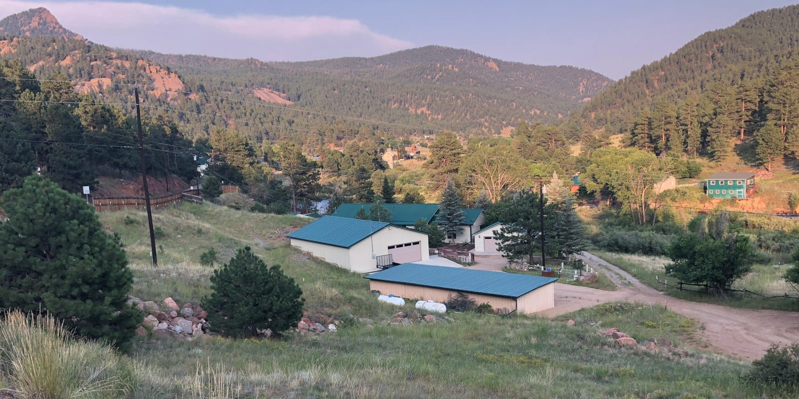 Pine Colorado