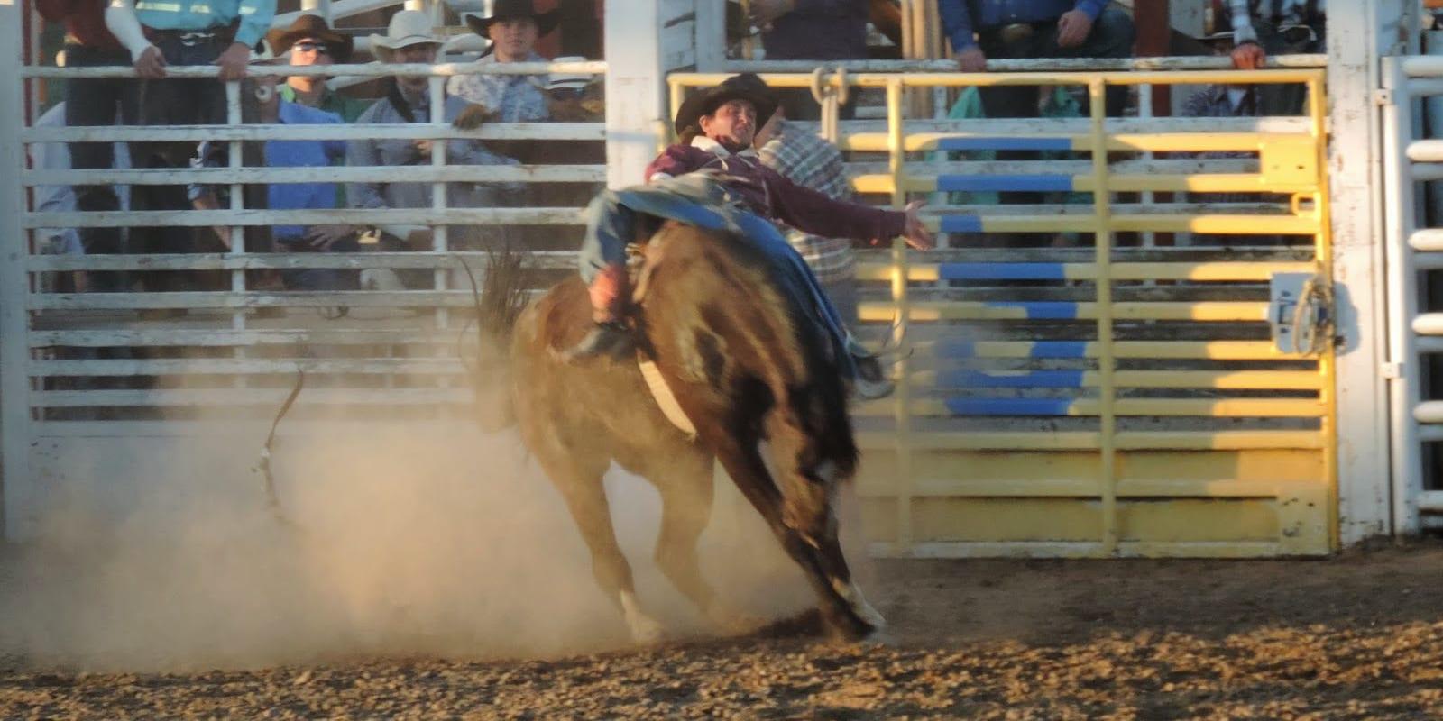 Royal Gorge Rodeo Canon City Colorado
