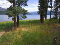 Vallecito Lake Bayfield