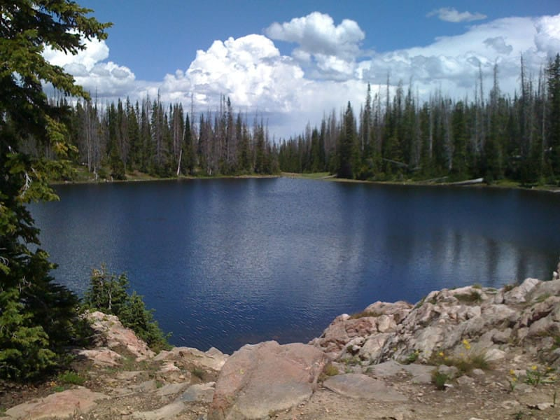 Buffalo Pass Summit Lake