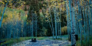 camping-near-aspen-co-silver-bell-campground-1600x800-1