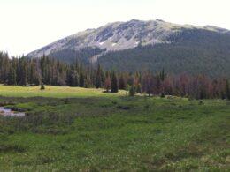 Neota Wilderness Colorado