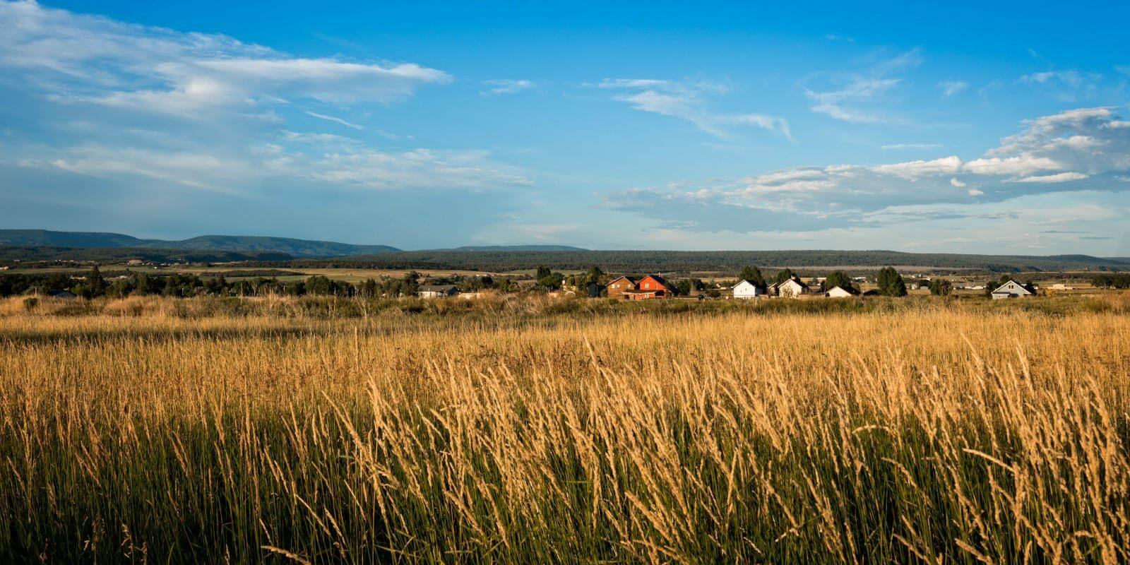 Norwood Colorado Town Homes