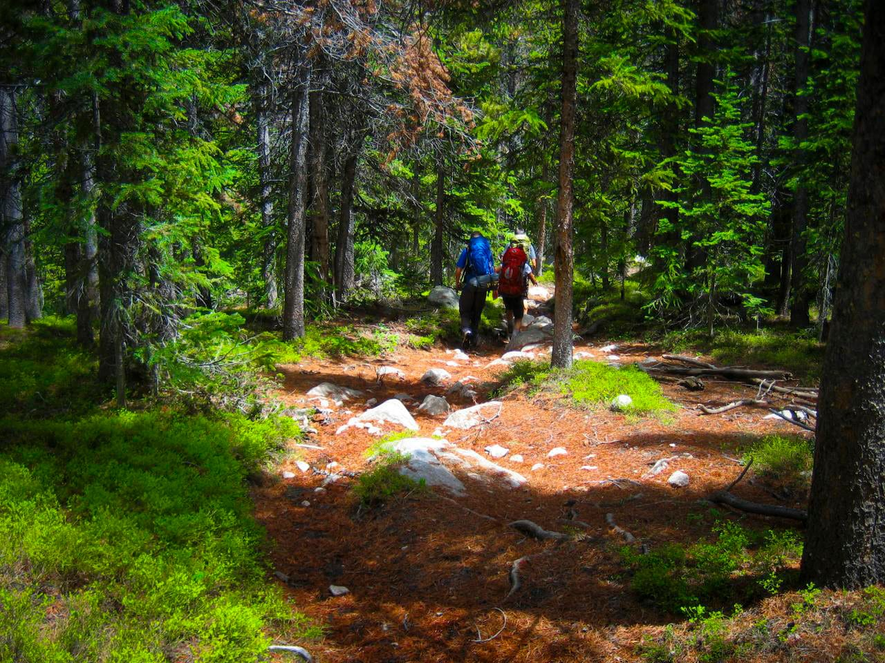 Rawah Wilderness Backpacking Hikers