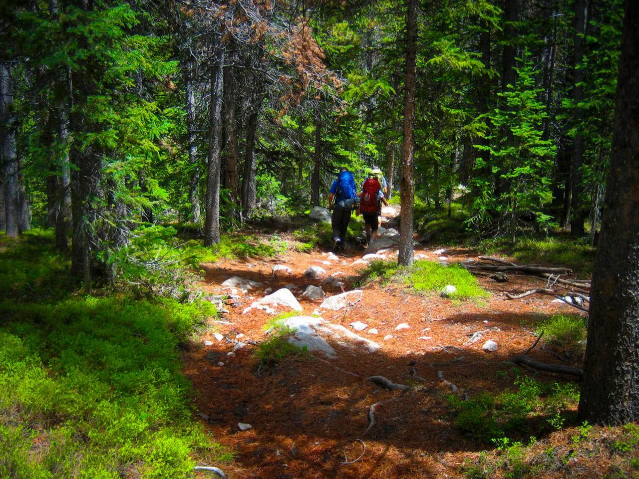 Rawah Wilderness Backpacking Hikers