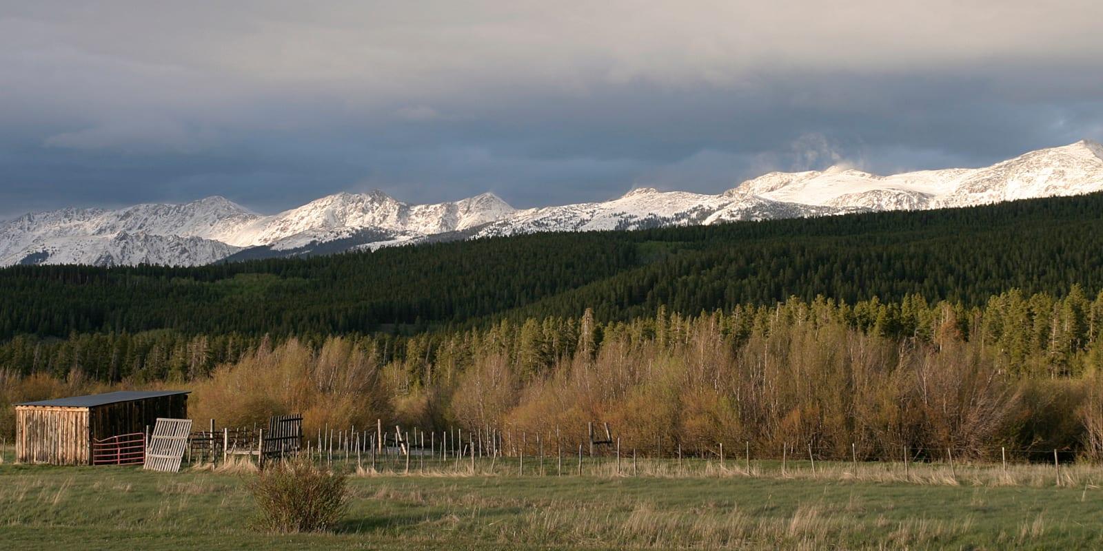 Rawah National Wilderness Area Colorado