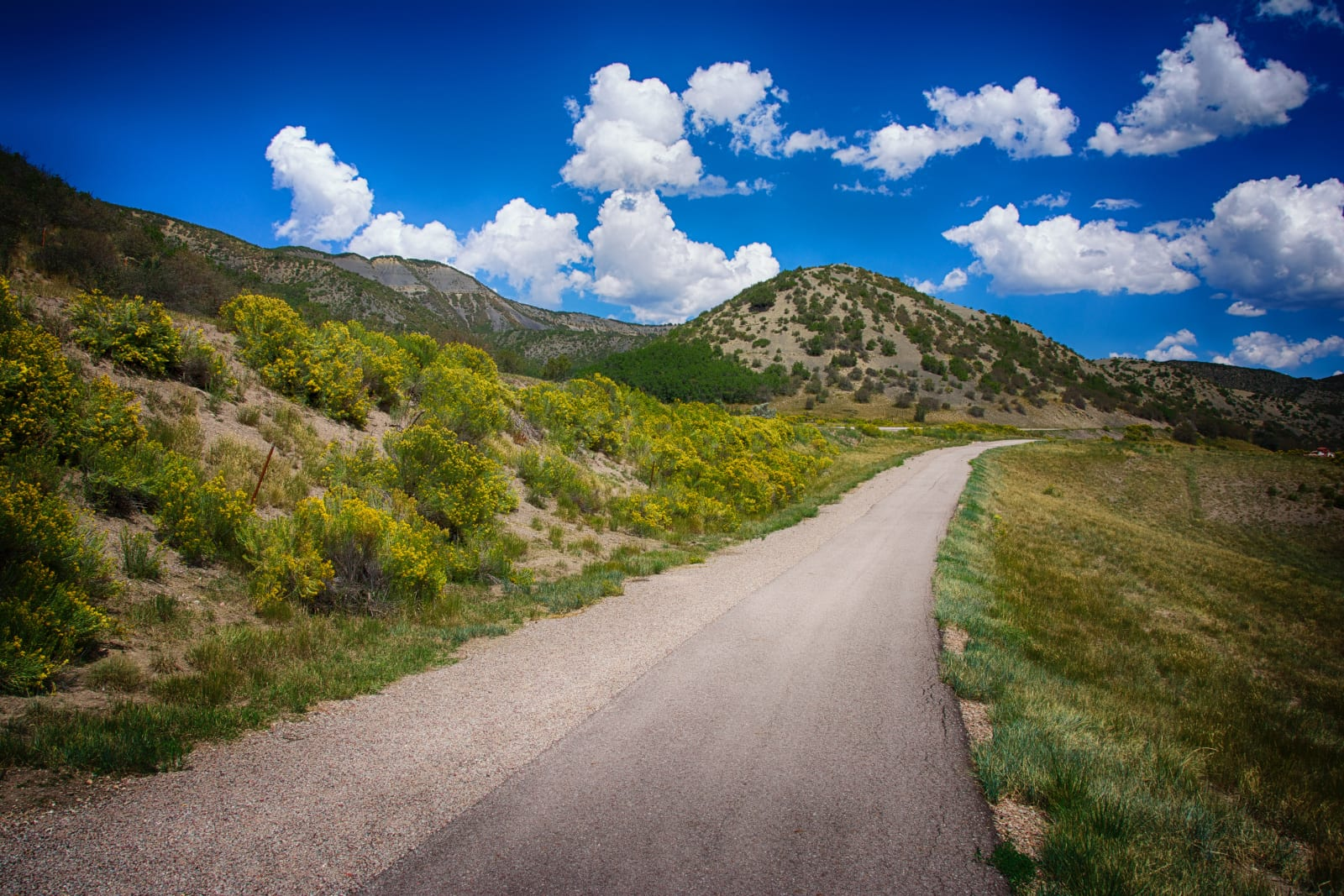 Woody Creek Colorado Country Road