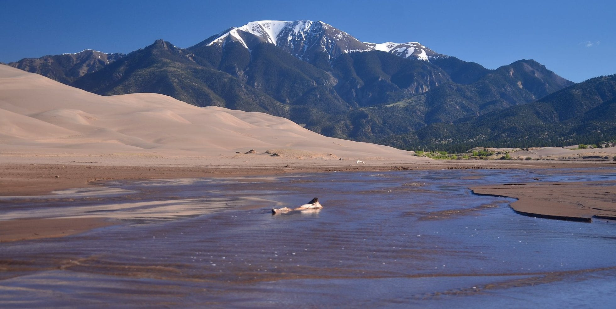 image of Medano Creek at Great Sand Dunes