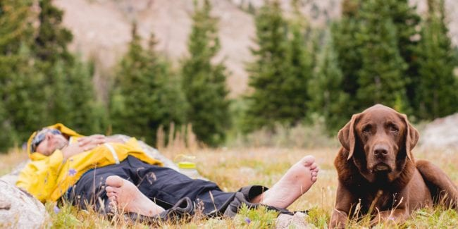 Mountain Living Man and Dog Lying Down Colorado Rocky Mountains