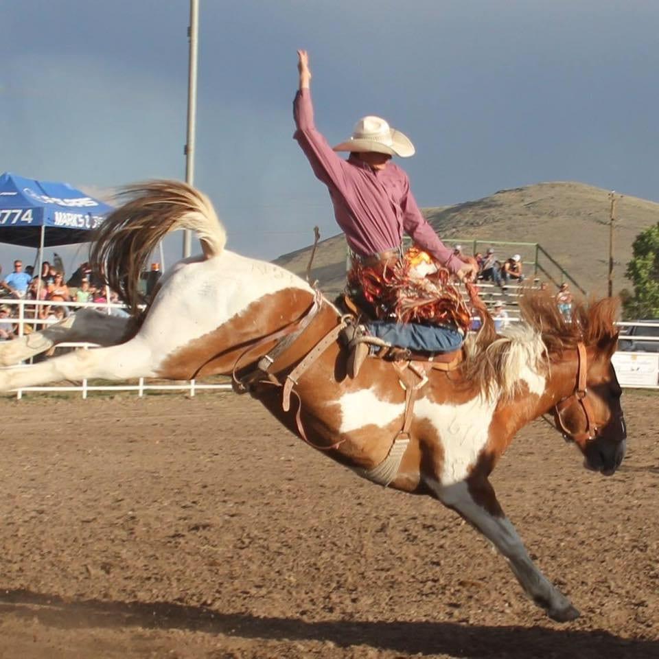 Manassa Pioneer Days Bronco Riding Cowboy