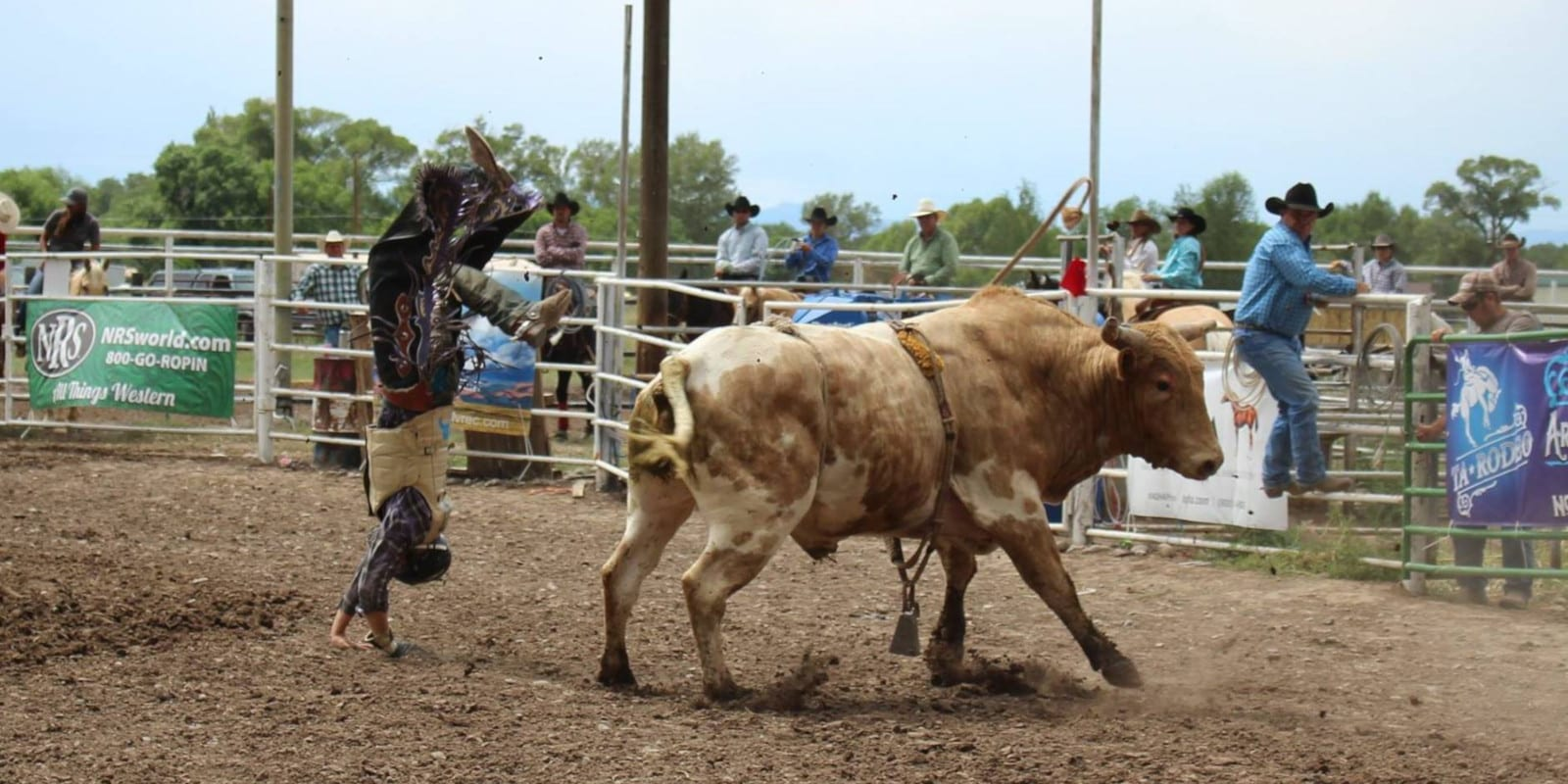 Manassa Pioneer Days Bull Riding Rodeo