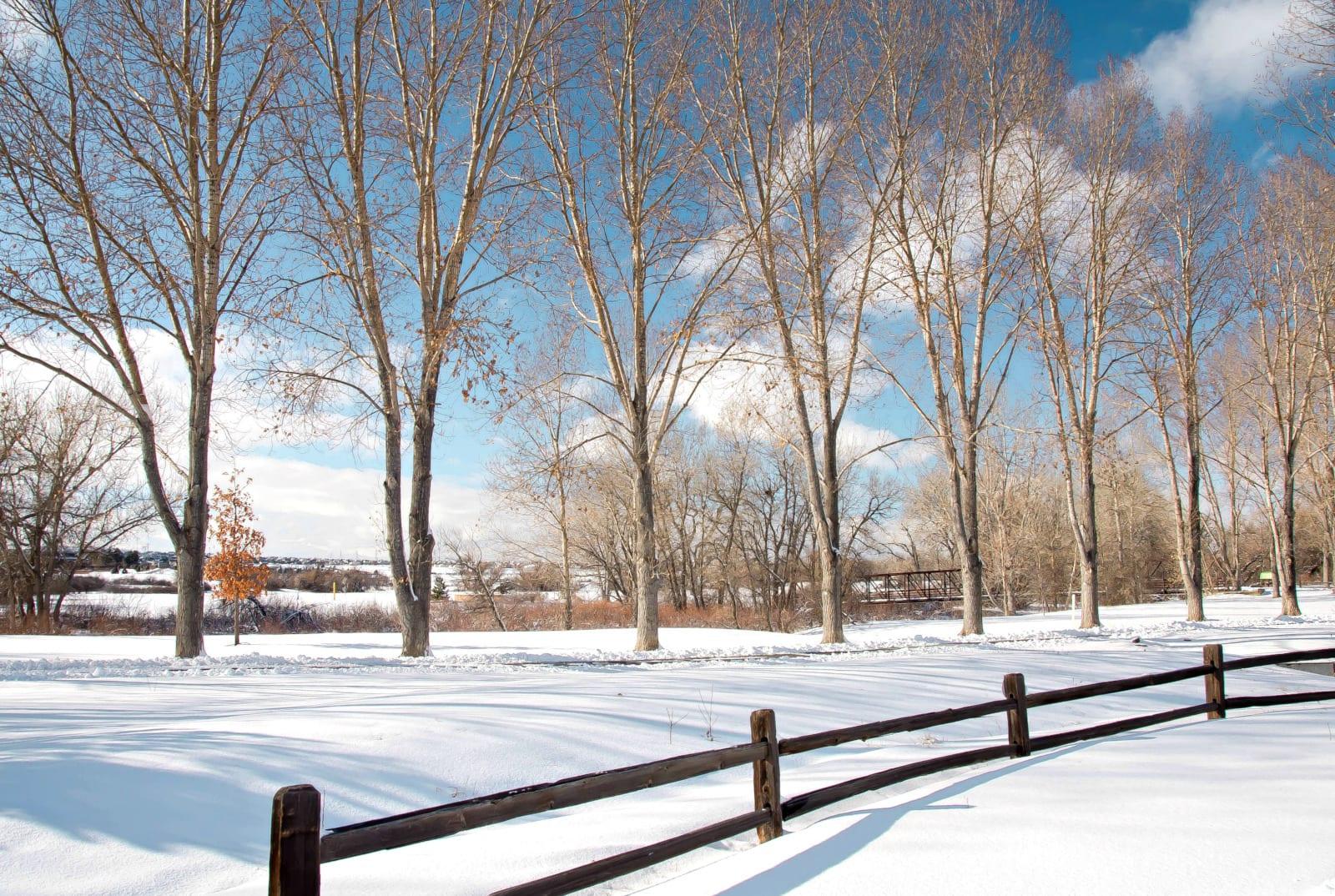 Parker Colorado McCabe Meadows Open Space