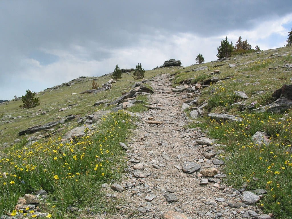 image of trail on Chief Mountain