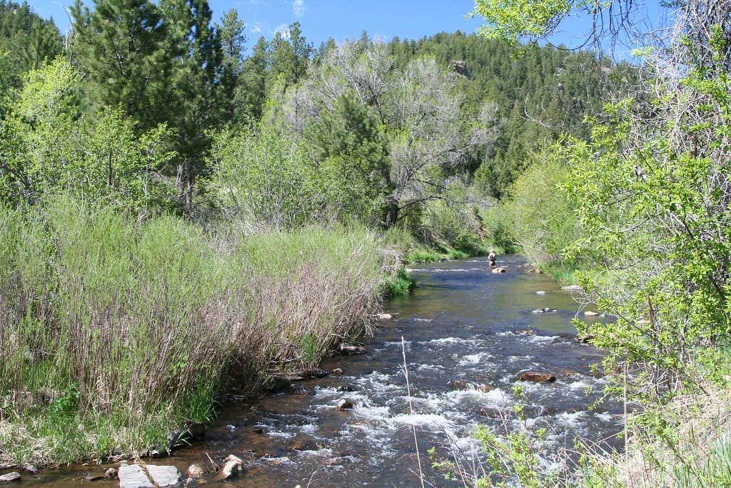 image of Bear Creek at Lair o the Bear Park