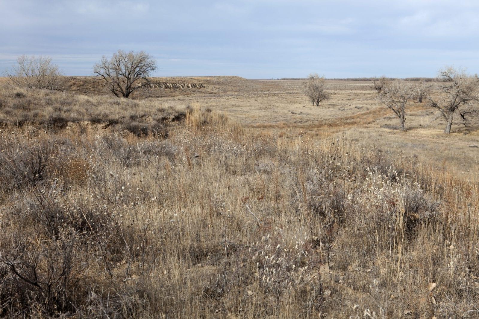 image of Sand Creek Massacre Historic Site