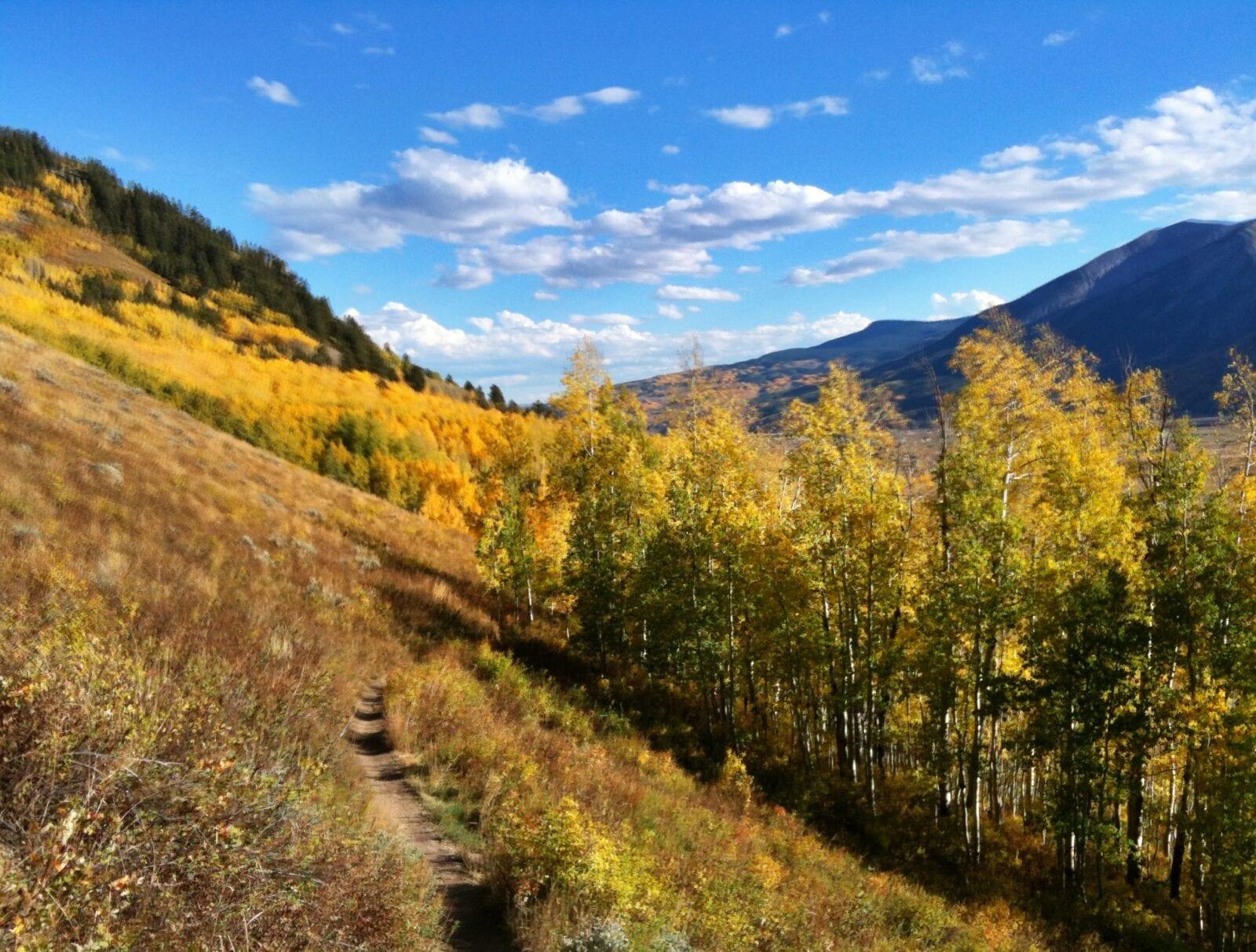 Mountain Biking Upper Loop Trail, Crested Butte, CO, USA