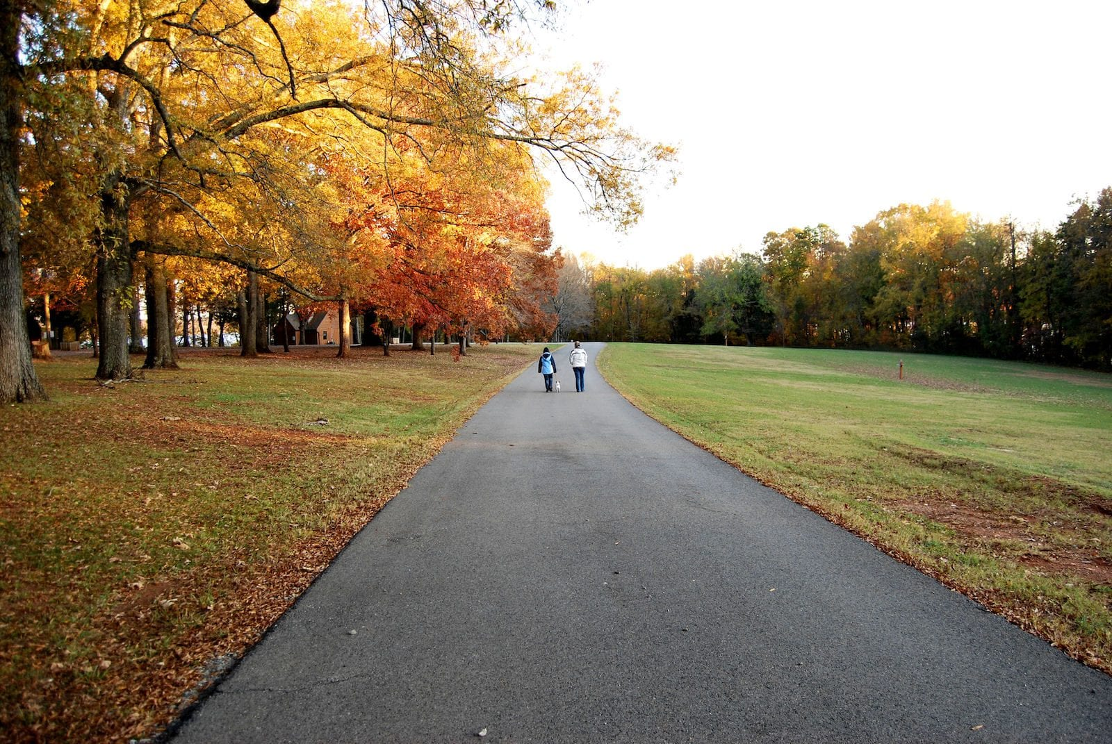 Staunton River State Park fall road