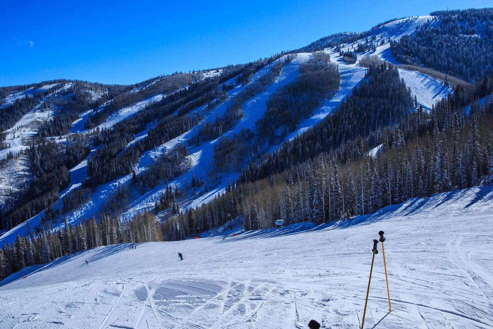Steamboat Springs Ski Resort