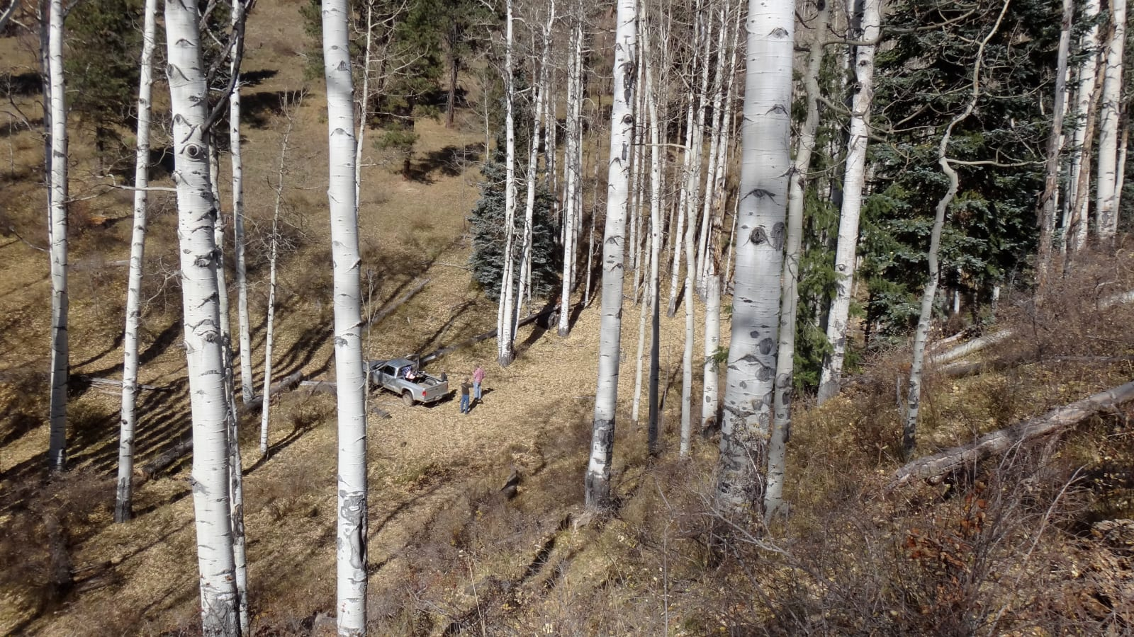 Big Game Hunting Colorado Looking Down On Truck in Forest