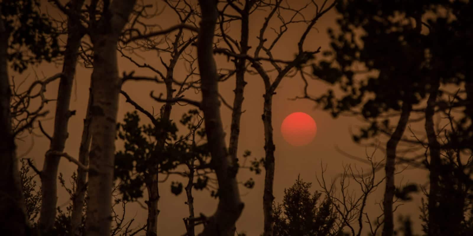 Colorado Wildfires Smoke on Poncha Pass