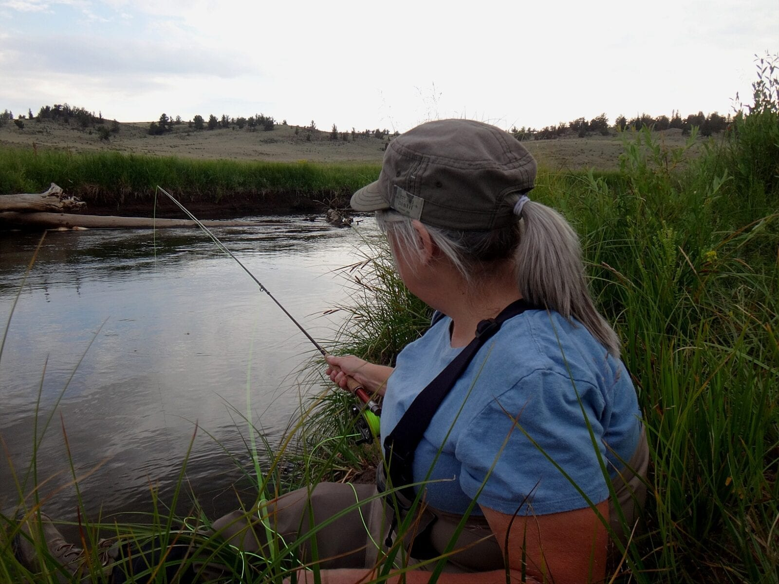 Fly Fishing Trout South Platte River Colorado