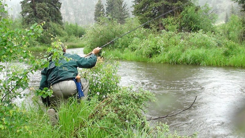 Fly Fishing for Trout River in Colorado Foggy Day