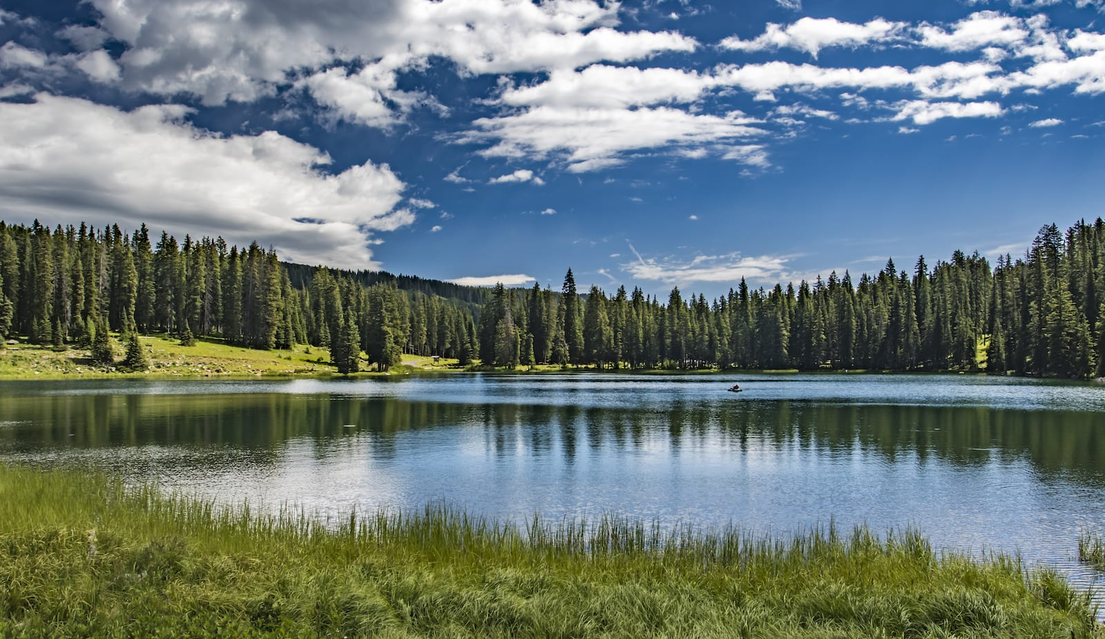 Grand Mesa National Forest Lake on Summit