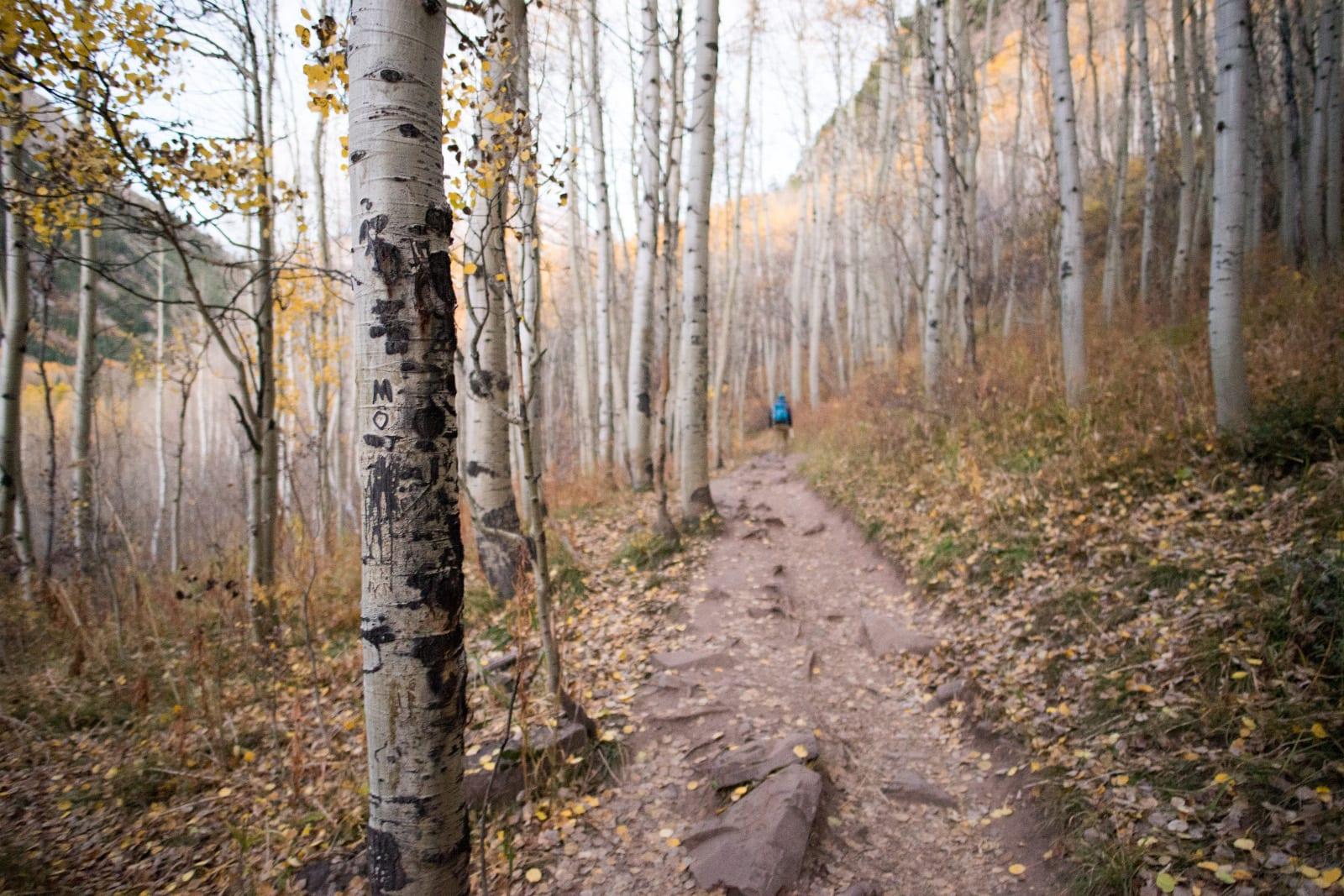 Maroon Bells Wilderness Trail Autumn Colorado