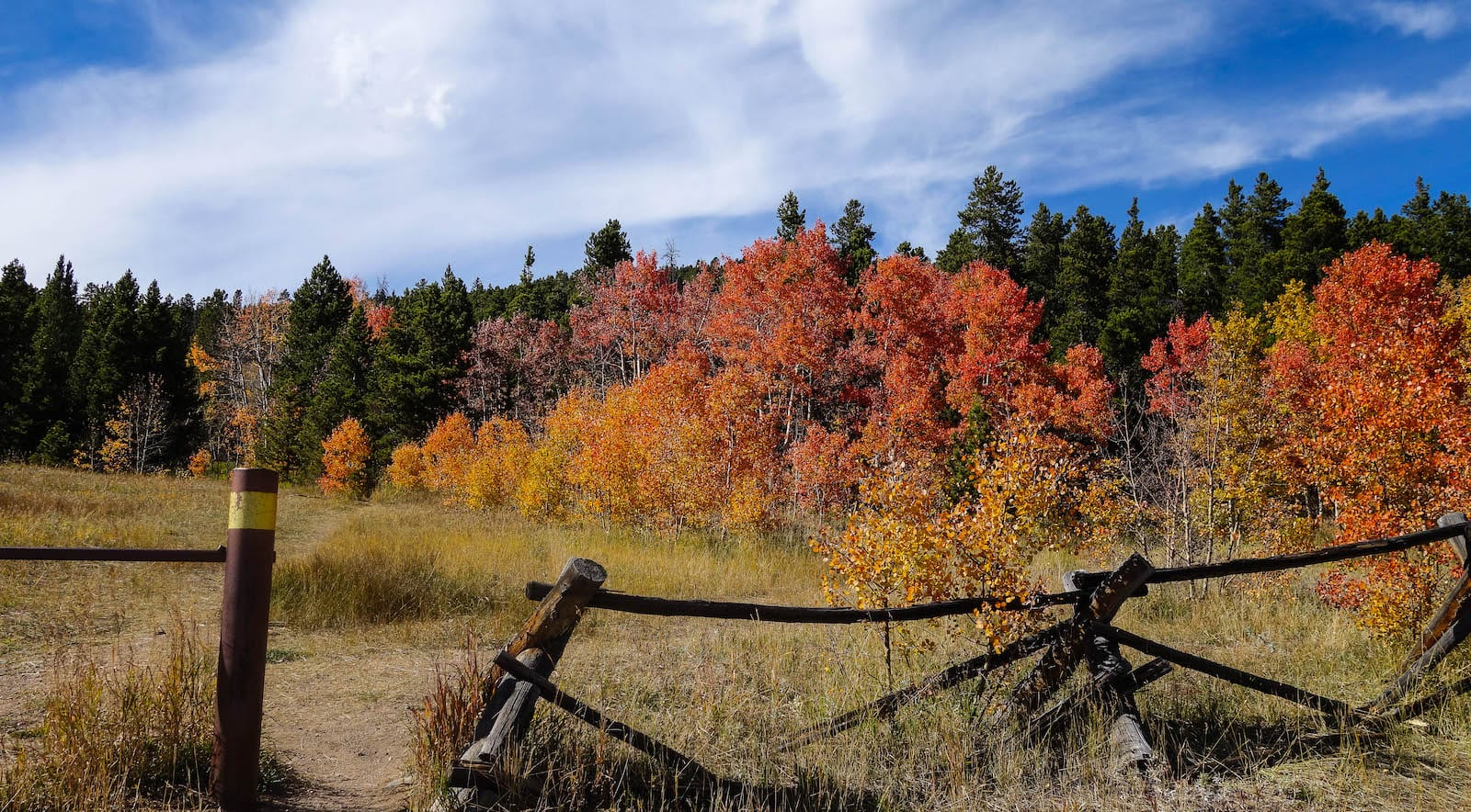 Falling fence in fall colors at Nederland Colorado