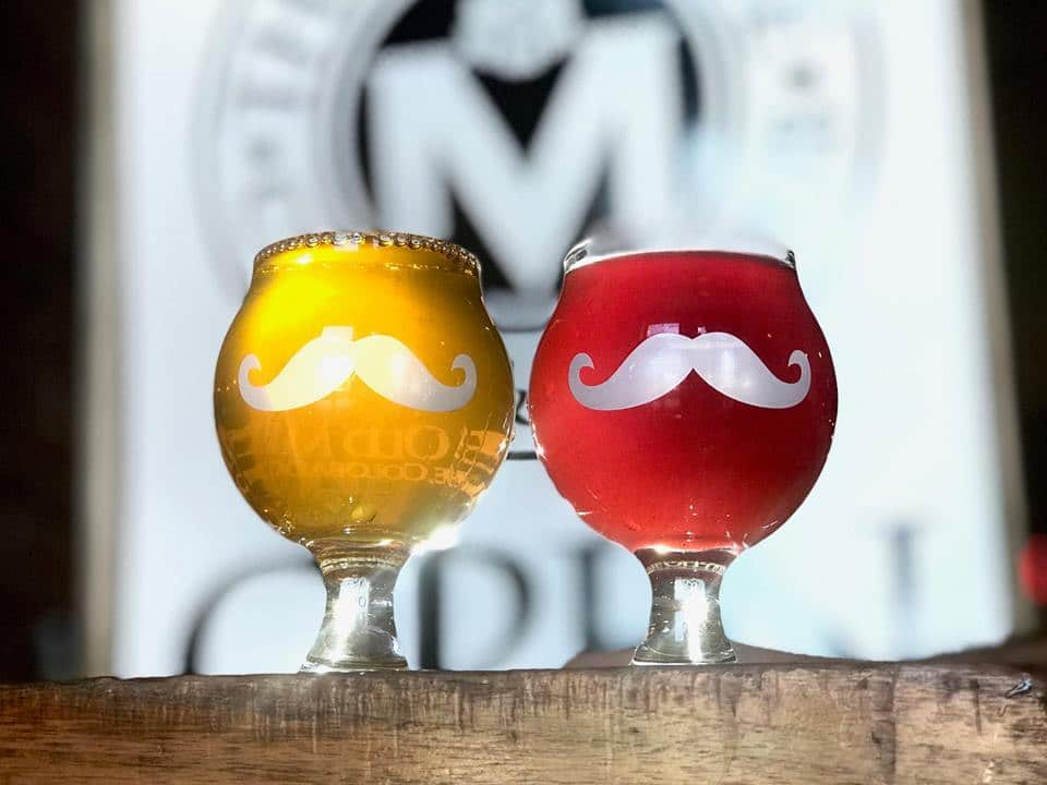 image of two glasses of cider