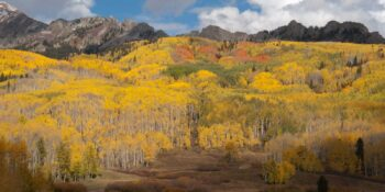 Best Fall Colors Colorado Kebler Pass Crested Butte
