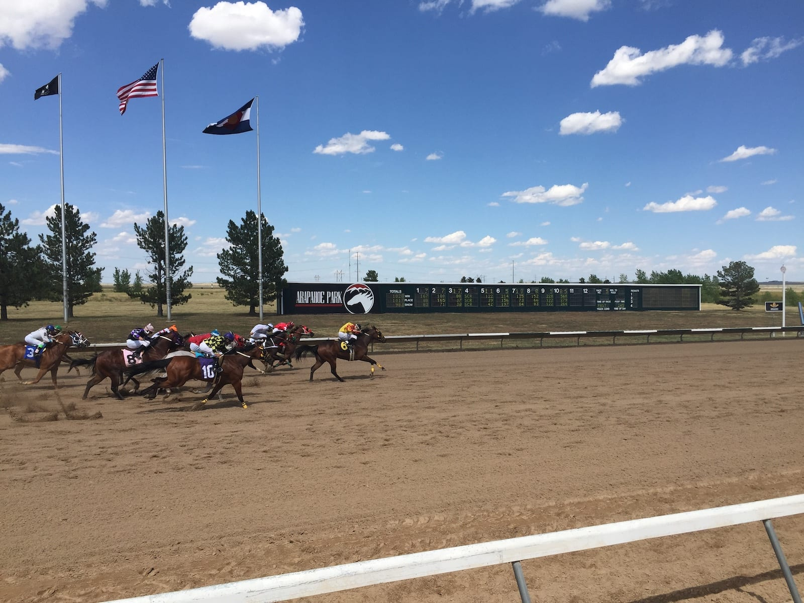 Horse Racing Arapahoe Park Racetrack Aurora CO