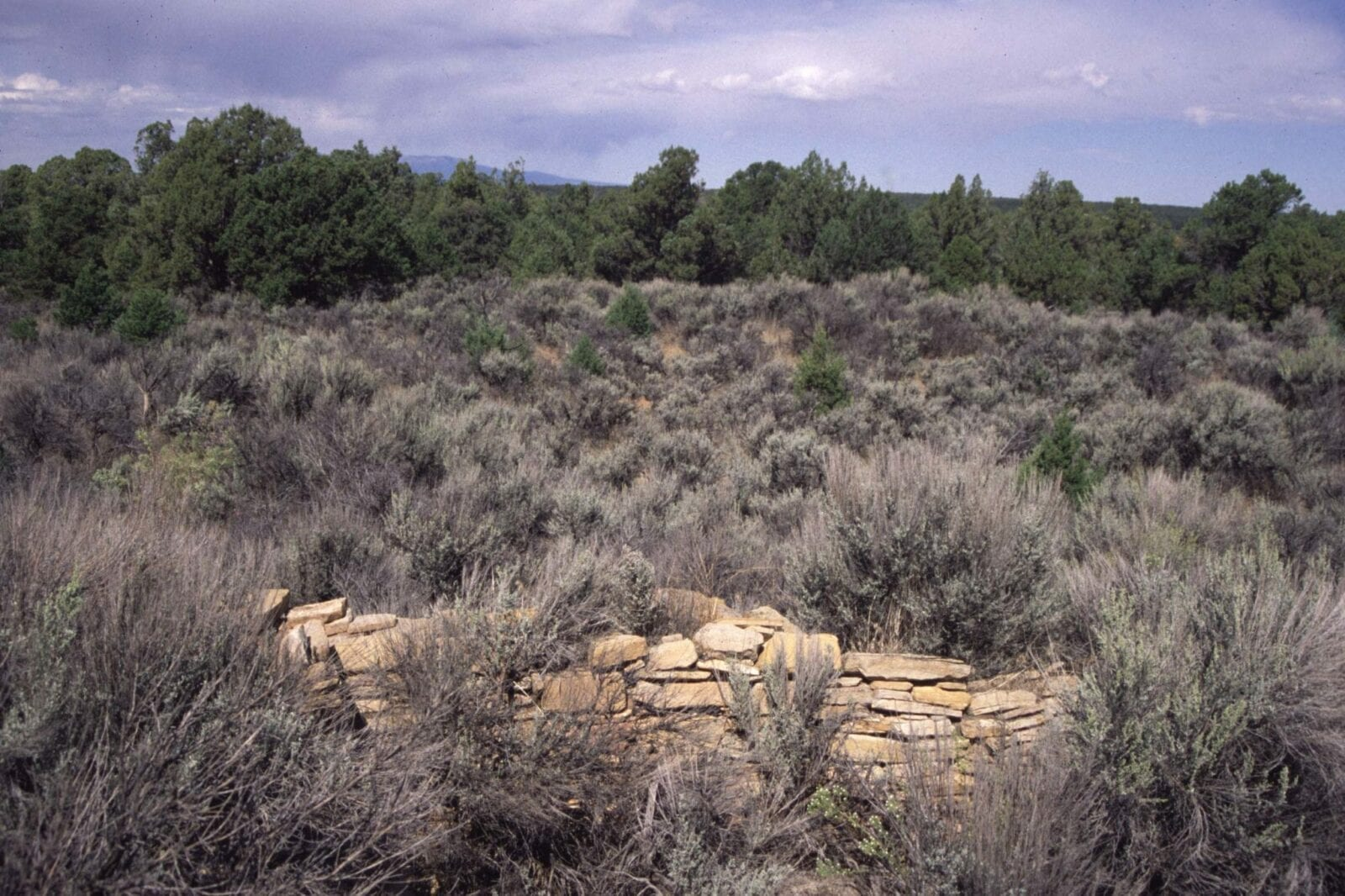 image of the ansel hall ruins