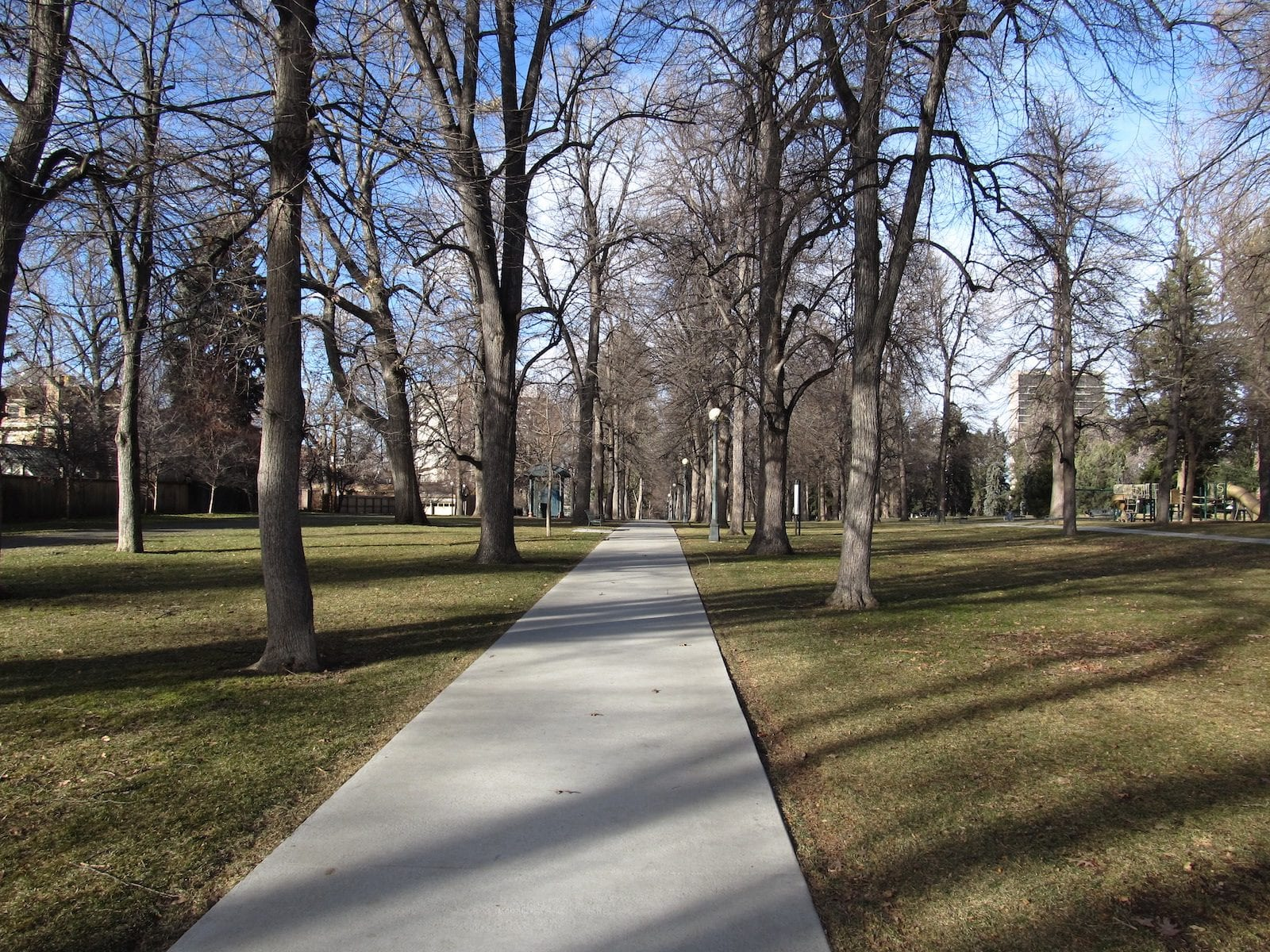 Cheesman Park, Colorado