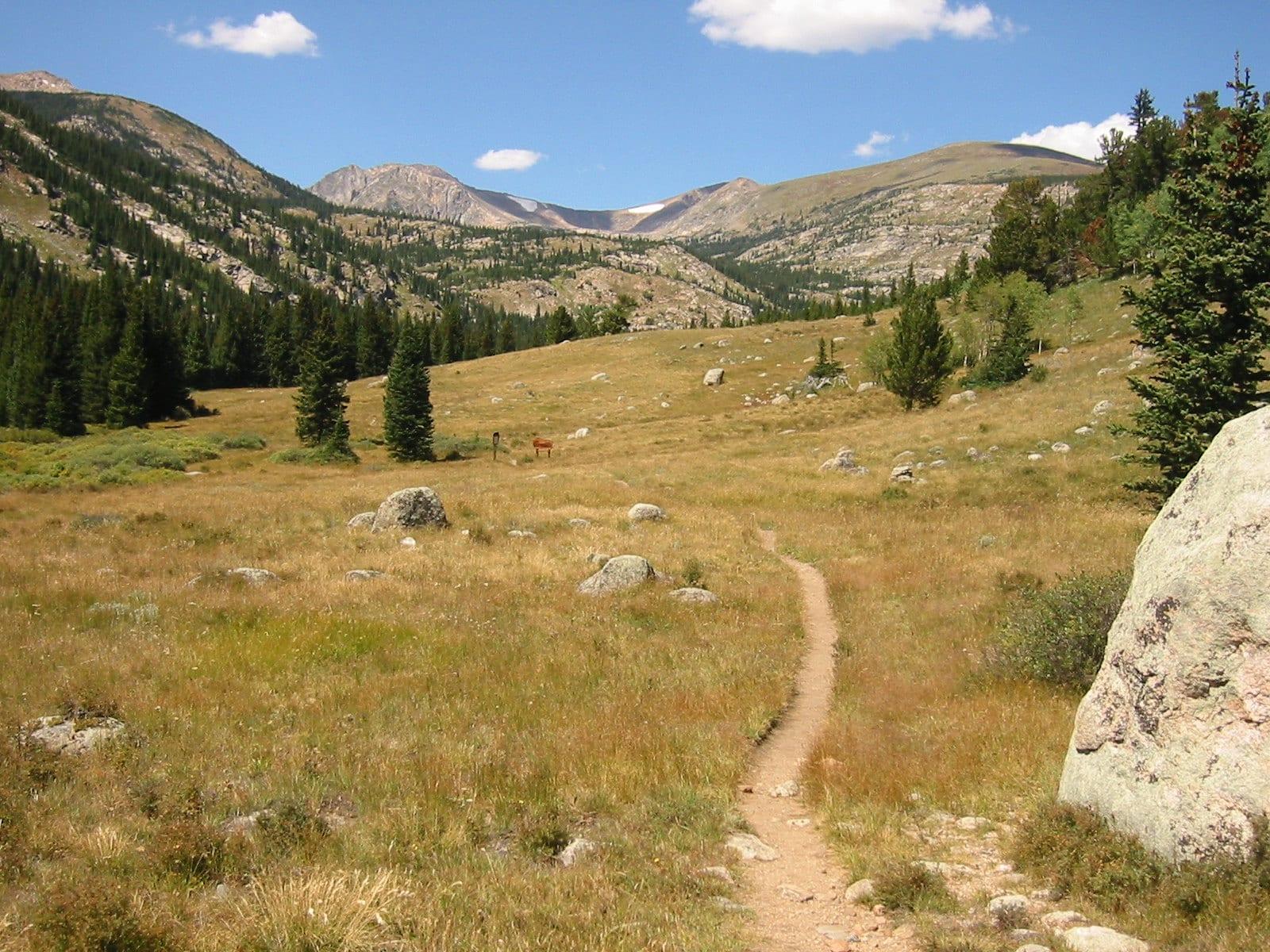 image of Indian Peaks Wilderness