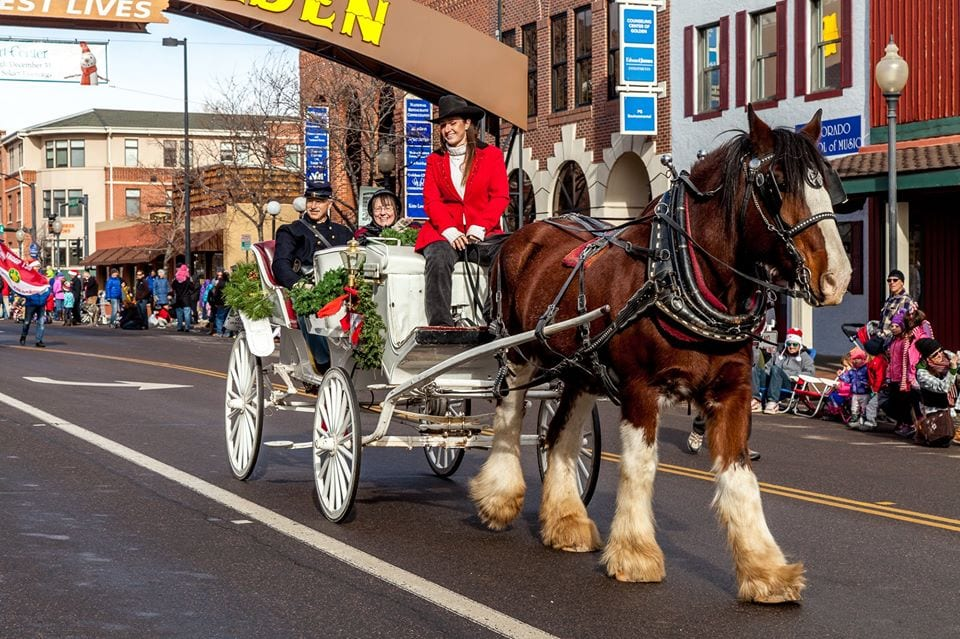 image of carriage ride
