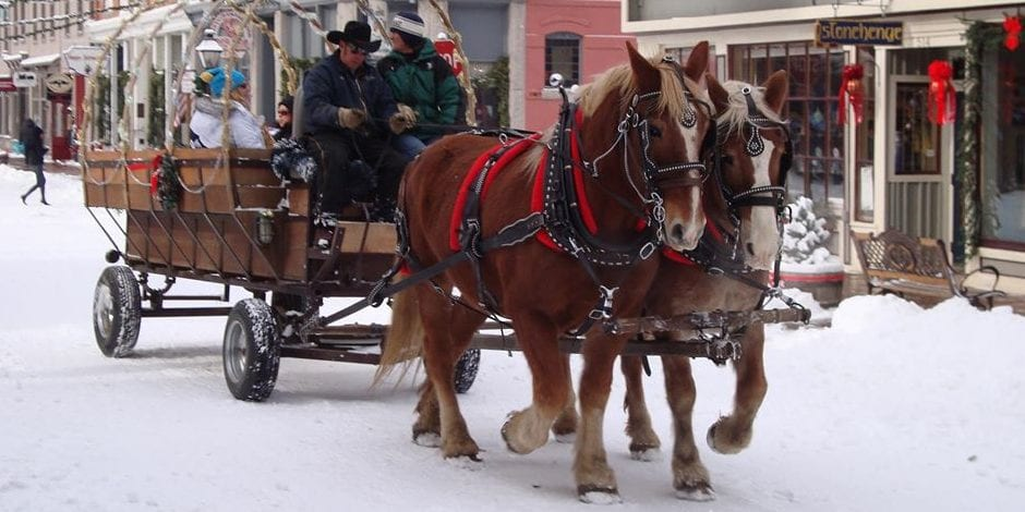 image of sleigh ride in georgetown