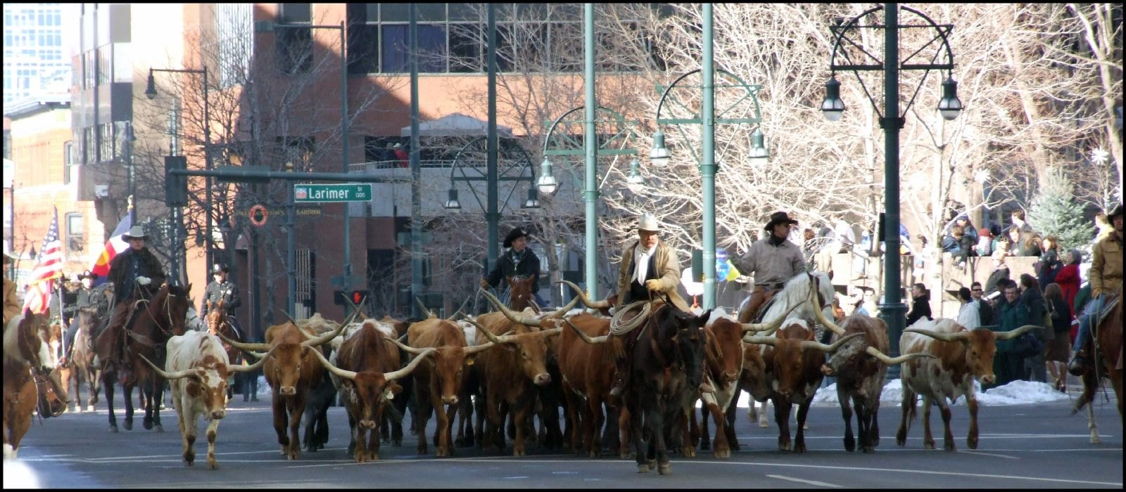 image of national western stock show
